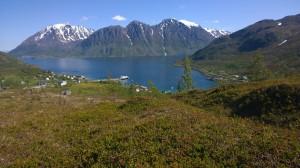 Sommer i Sør-Tverrfjord